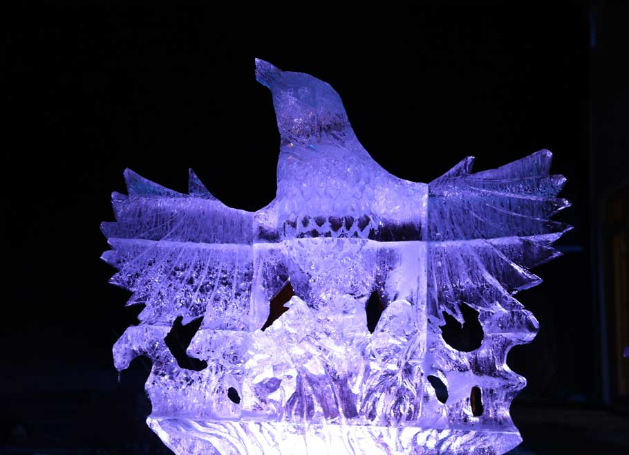 Winners Ice Sculptures Contest
